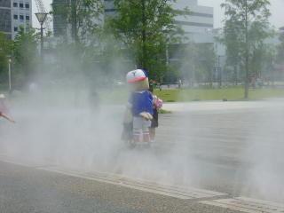 f:id:yokohamarosa:20090613123117j:image