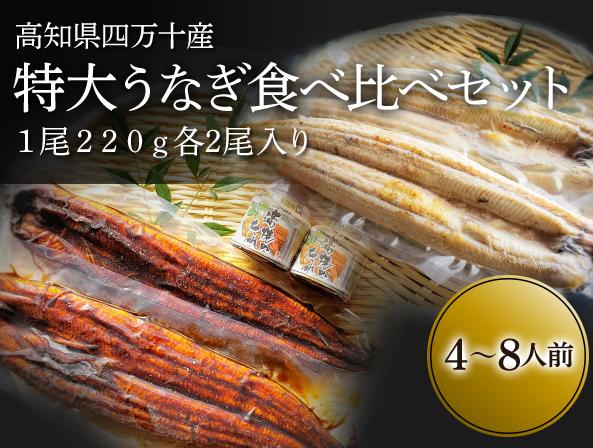 f:id:yokosai:20190814110058j:plain