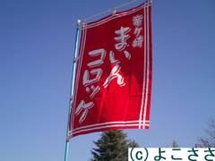 f:id:yokosasa:20101206181734j:image