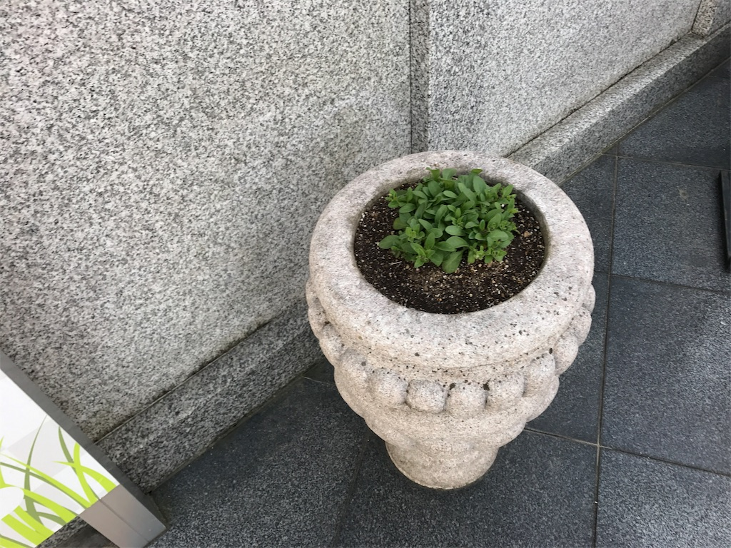 f:id:yokota-sekizai:20170421182917j:image
