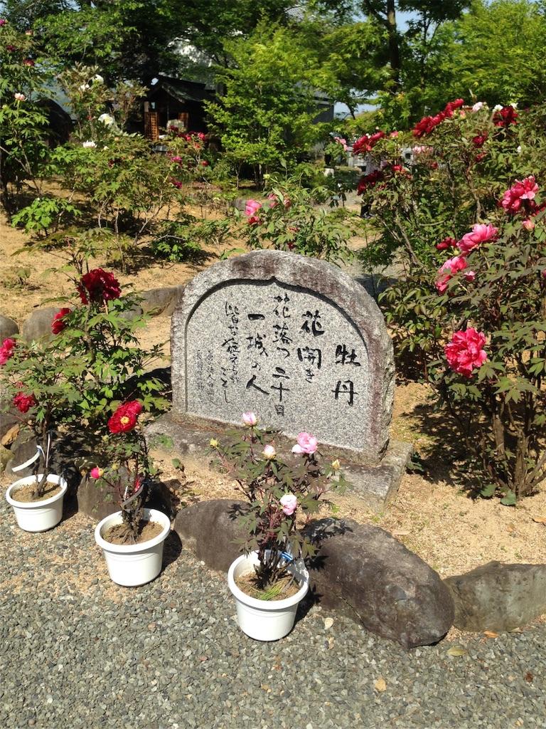 f:id:yokota-sekizai:20170502165042j:image