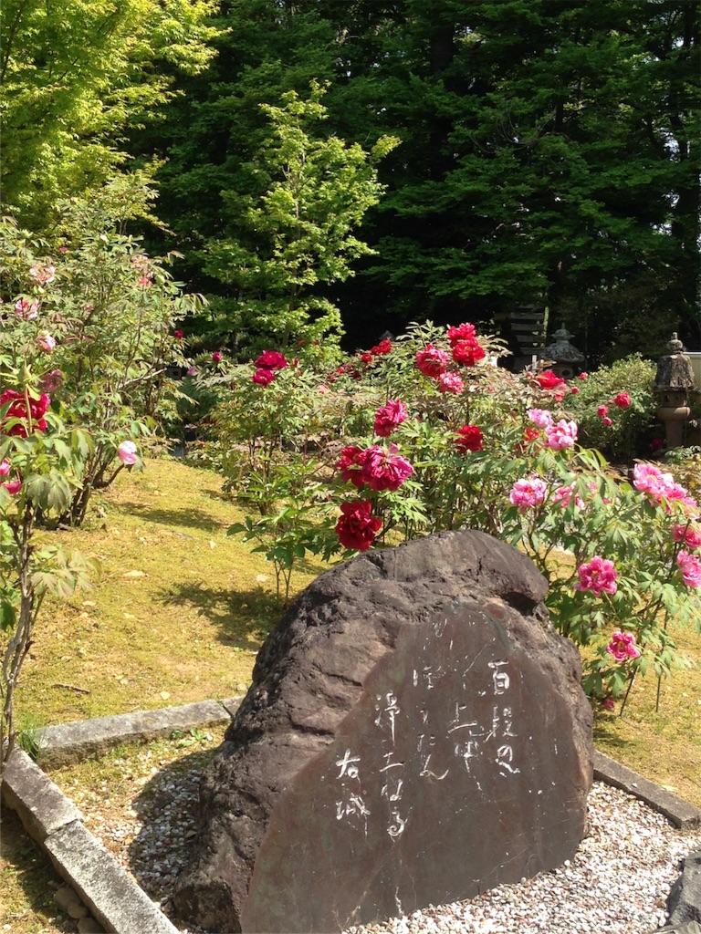 f:id:yokota-sekizai:20170502165212j:image