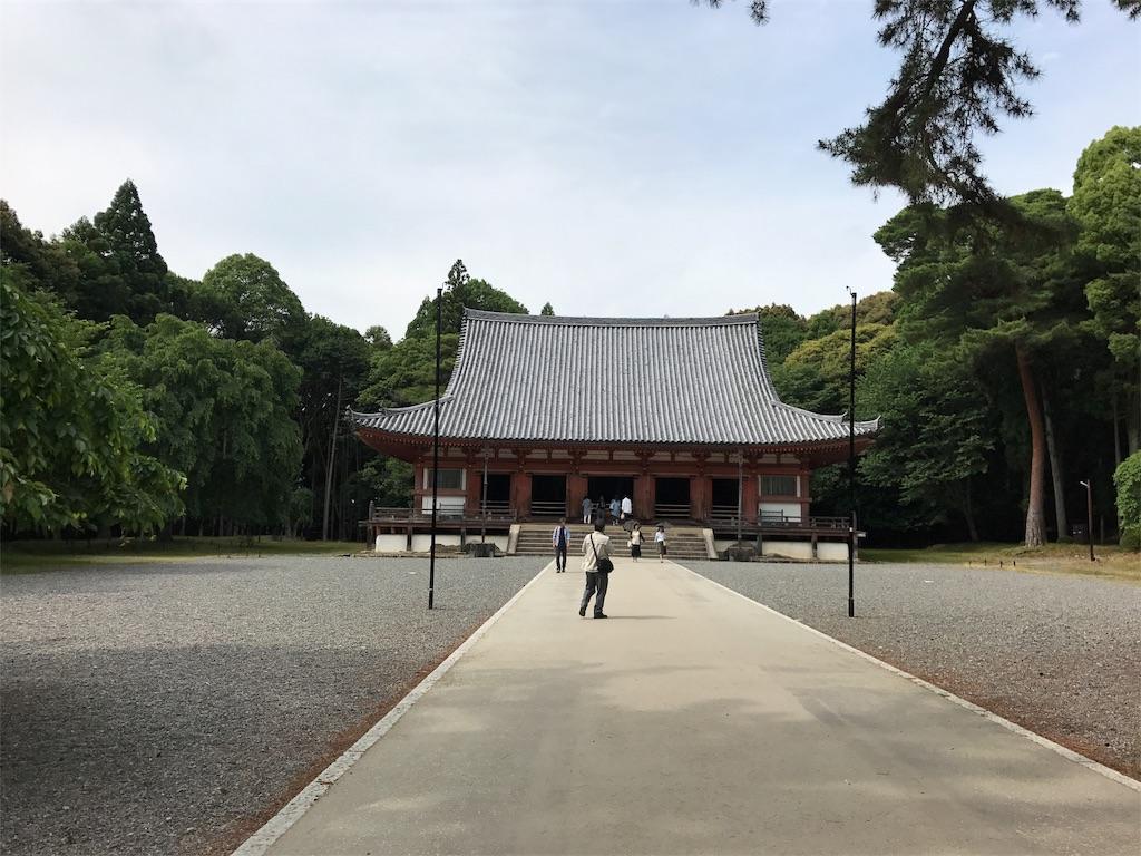 f:id:yokota-sekizai:20170621153944j:image