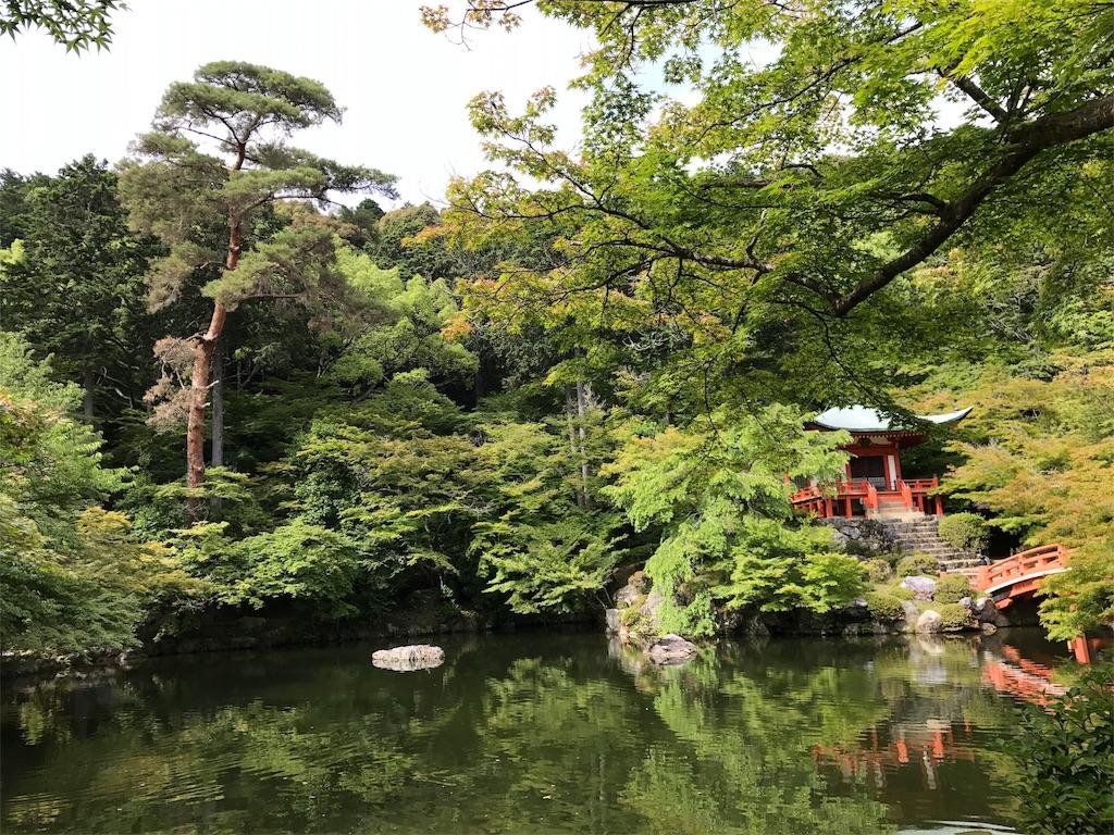f:id:yokota-sekizai:20170621154704j:image