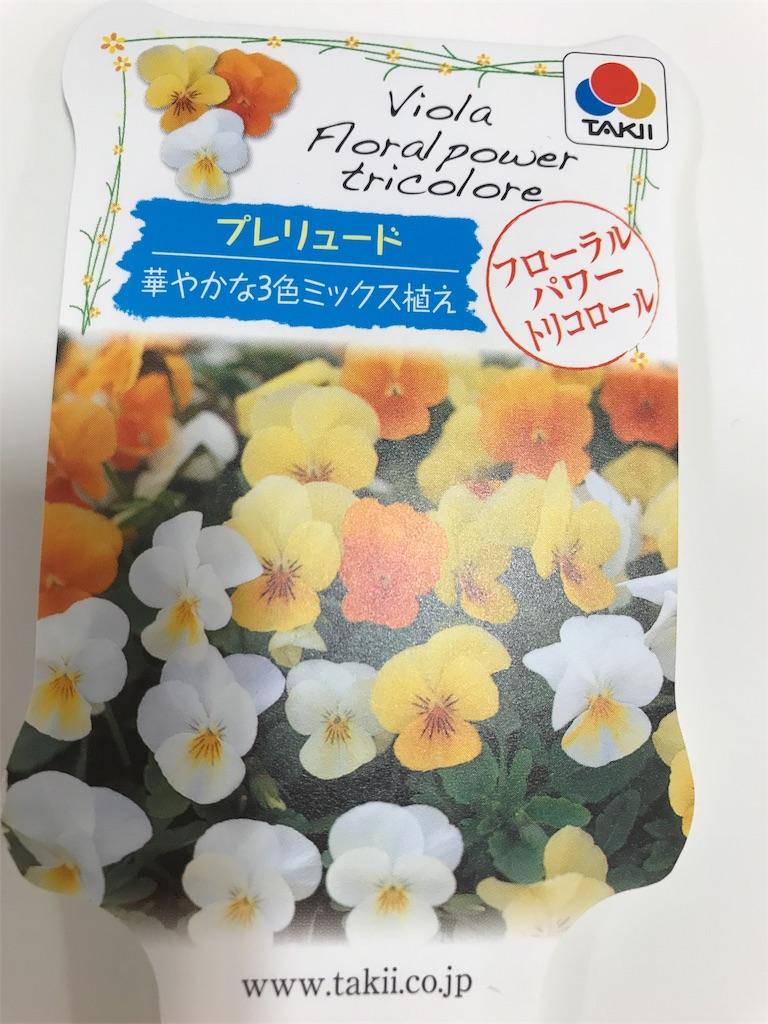 f:id:yokota-sekizai:20171107184801j:image