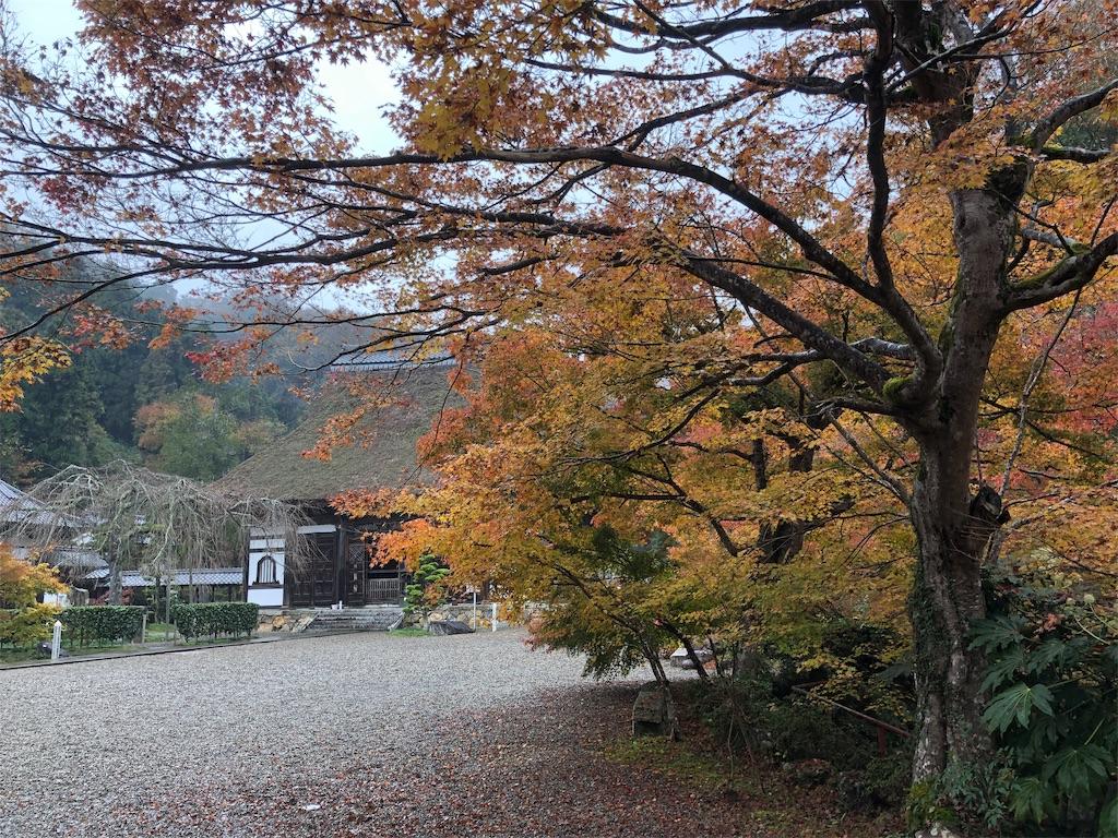f:id:yokota-sekizai:20181122191934j:image