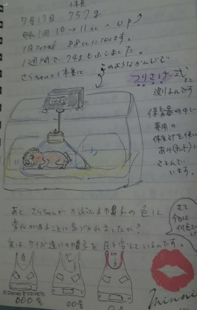 f:id:yokotedaichi:20160806114642j:plain