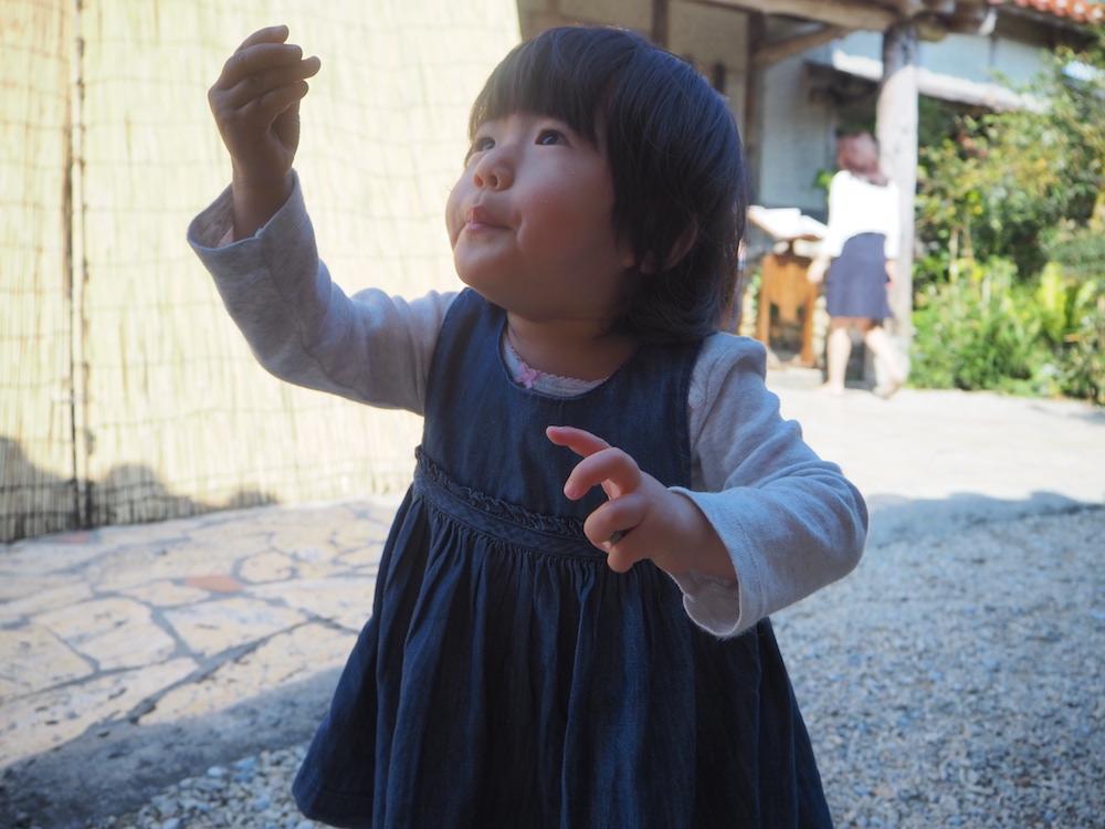 f:id:yokotedaichi:20180303195036j:plain