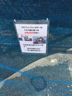 f:id:yokoyoko1111:20161112171559p:plain