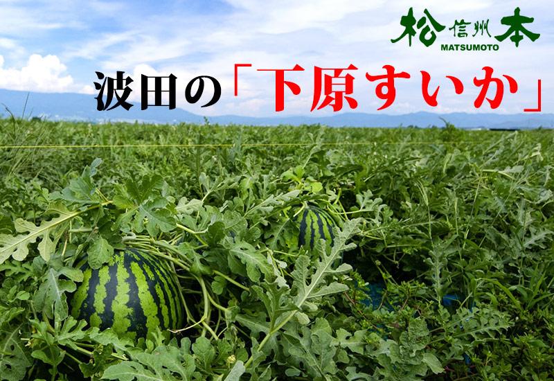 f:id:yokoyoko1111:20161230140000j:plain