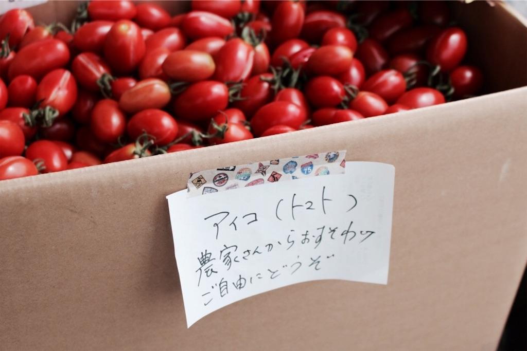 「ヨシノリコーヒー」前にあったトマト