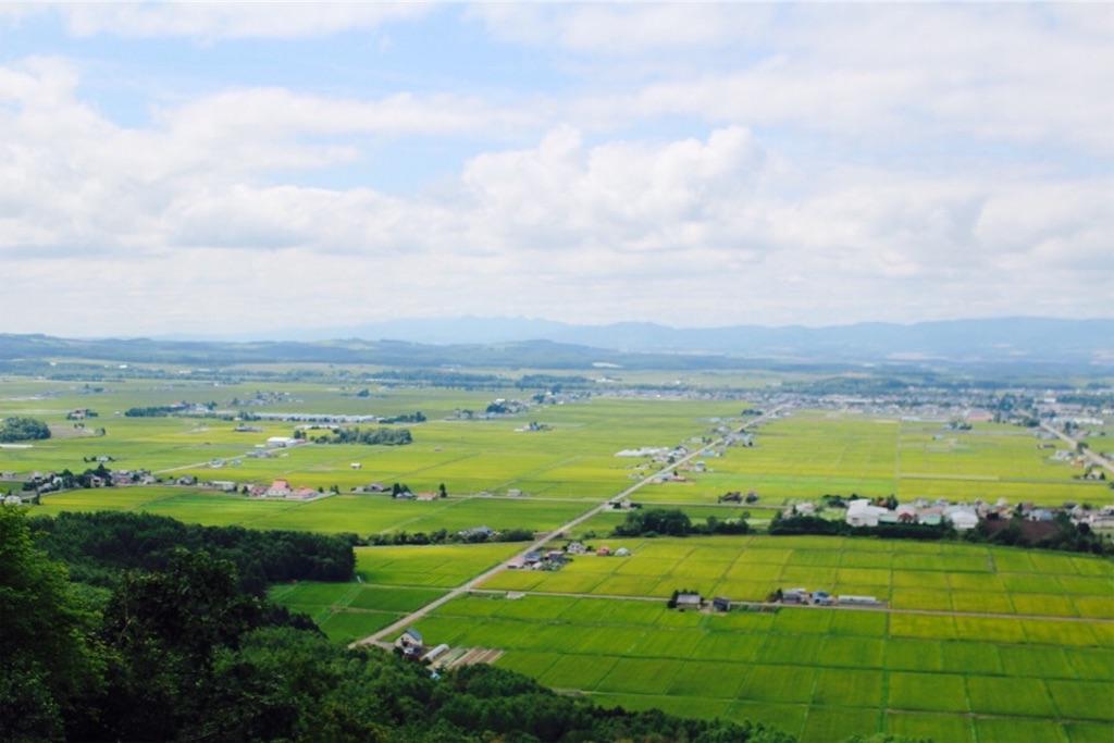 キトウシ展望閣から見た東川