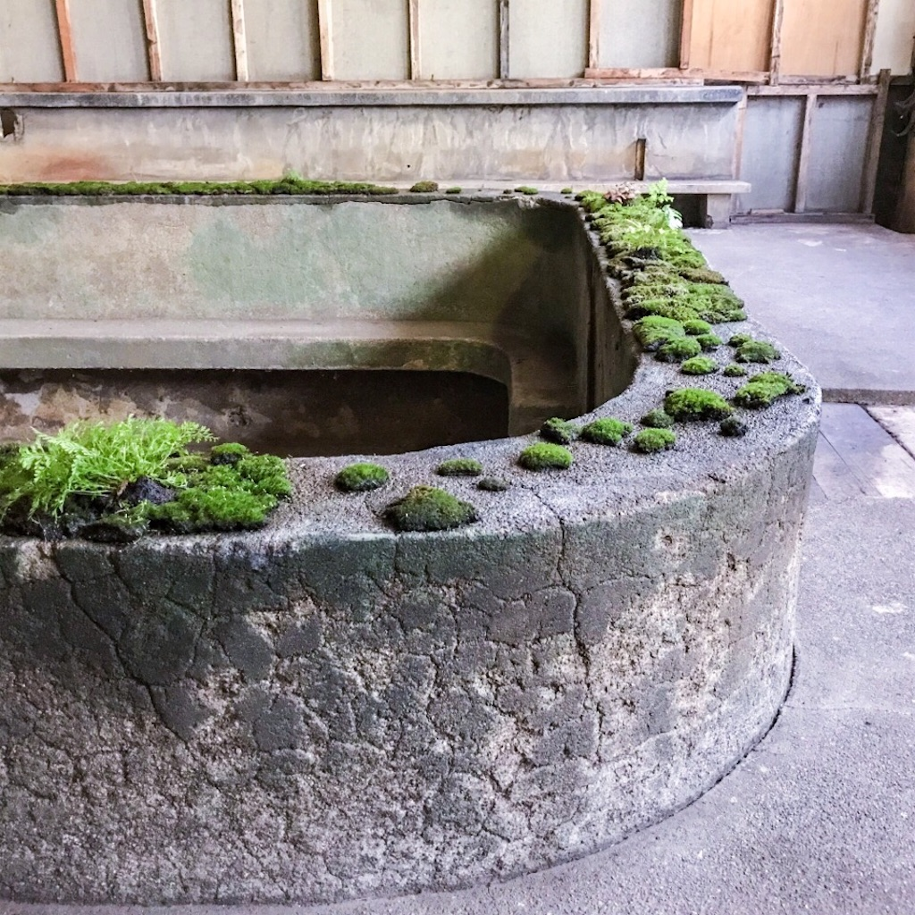 旧住友赤平炭鉱抗口浴場の浴槽と苔