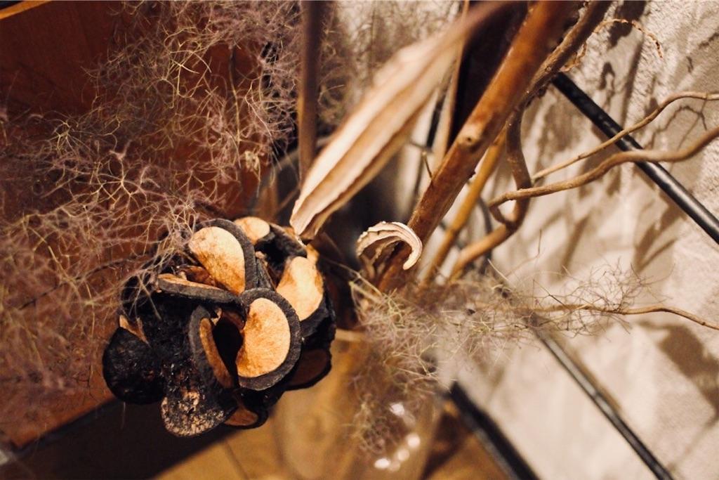 枝ものと一緒にディスプレイしたドライフラワー