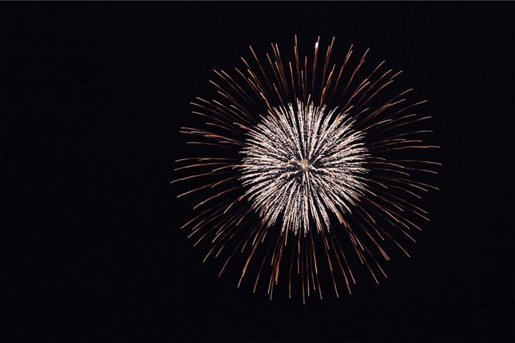 夜空に映える帯広の勝毎(かちまい)花火