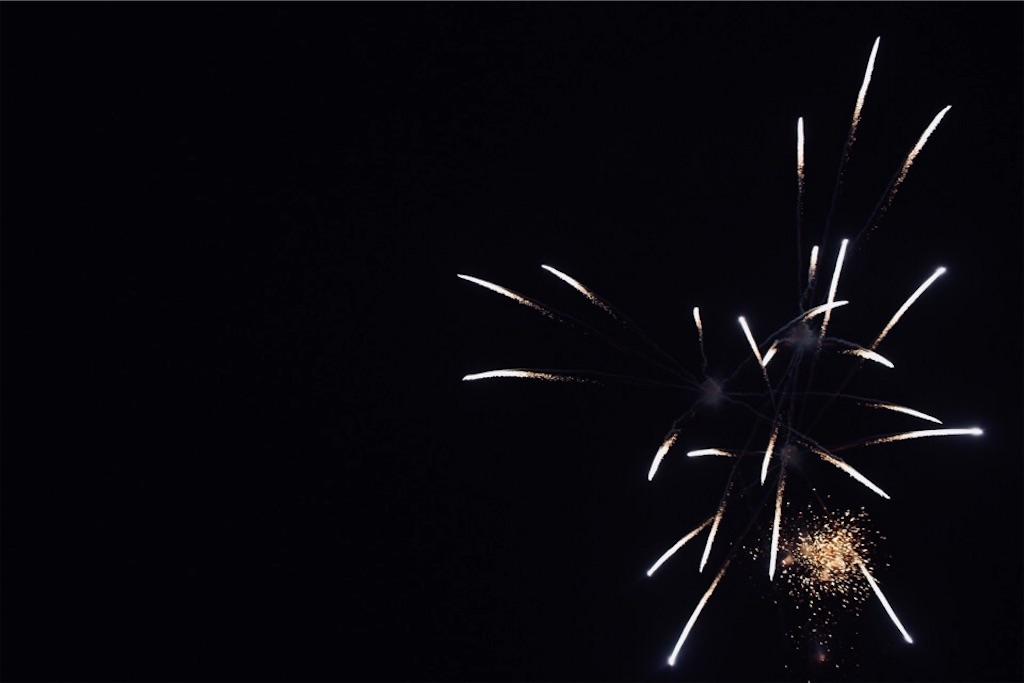 勝毎(かちまい)花火で見た花火