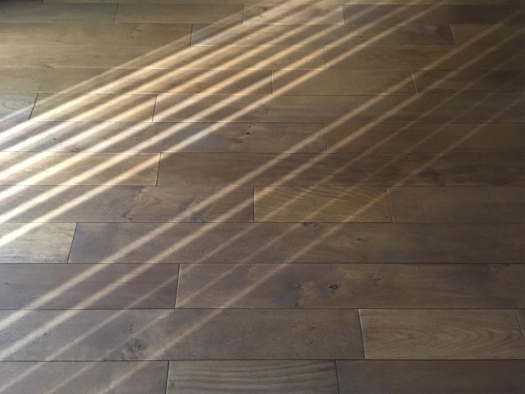 バーチカルブラインド越しに入る日の光