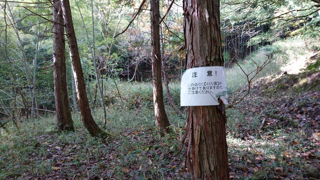 f:id:yokozukioyaji:20181115212939j:plain