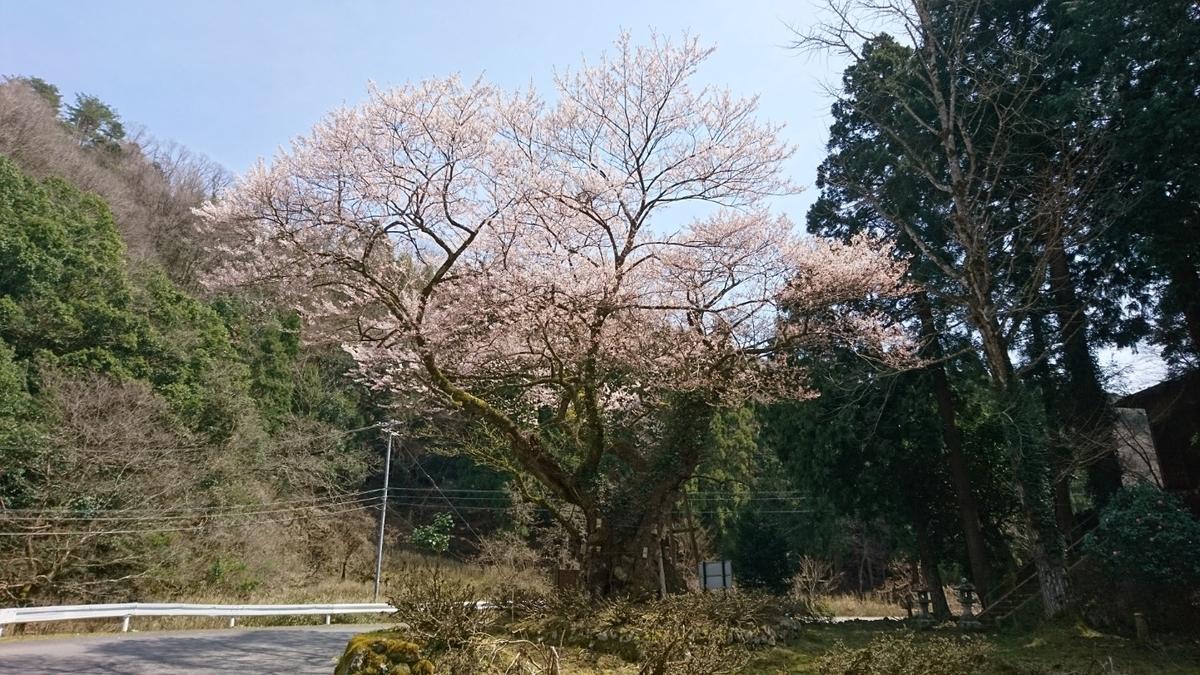 f:id:yokozukioyaji:20200326205143j:plain
