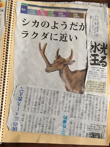 f:id:yome_koi:20170816152007j:image