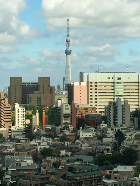 ビルから見えた風景の写真