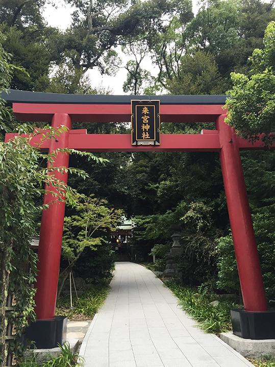 来宮神社の画像