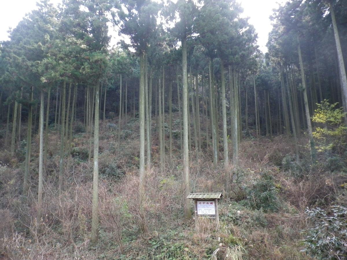 f:id:yomohei:20210418175935j:plain
