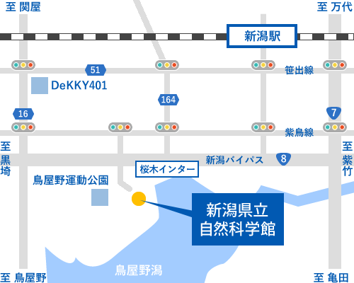 f:id:yomotu_nayami:20200131233906p:plain