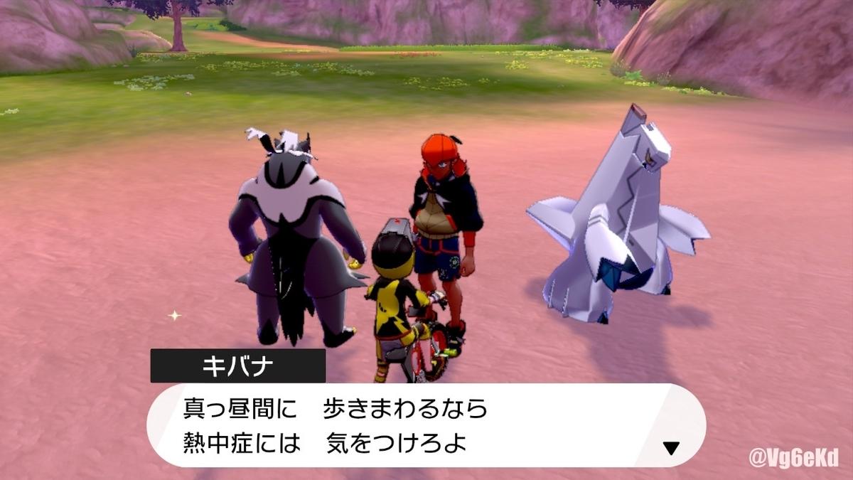 ソード 孤島 ポケモン 行き方 の 鎧