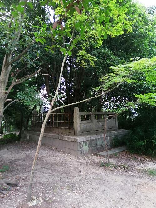 f:id:yomumirukaku:20200809062320j:plain