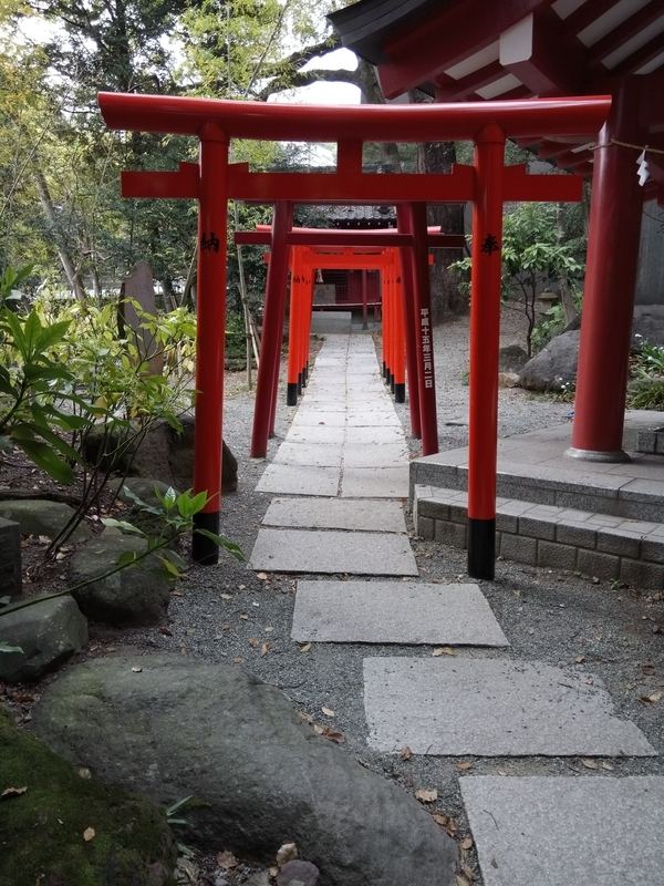 来宮神社の連続鳥居