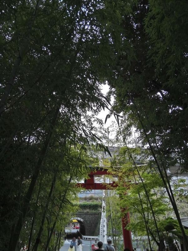 来宮神社の鳥居、反対側から