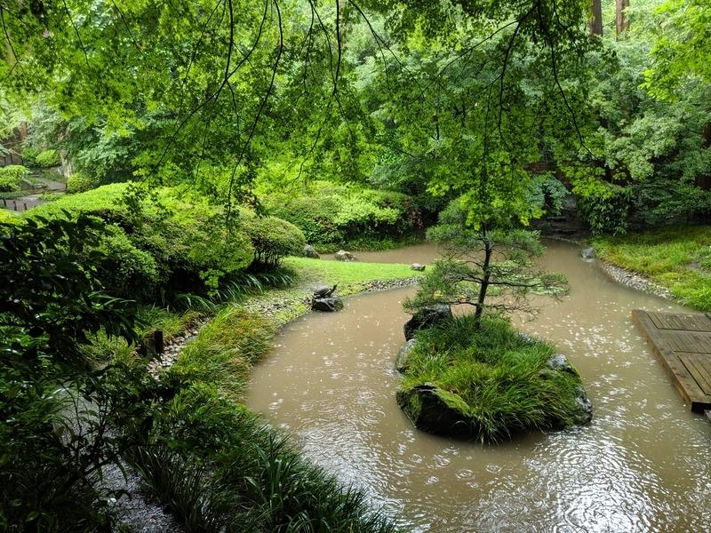 本堂後庭園の池