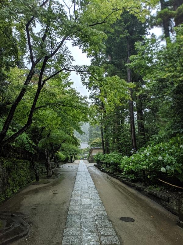 妙香池に向かう道
