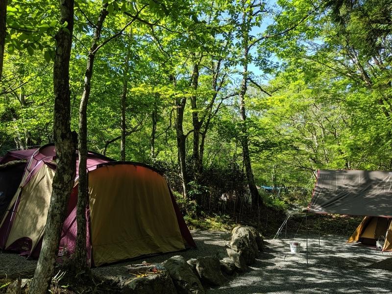 朝露に濡れたテント
