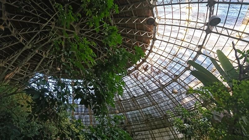 草津熱帯園のドーム