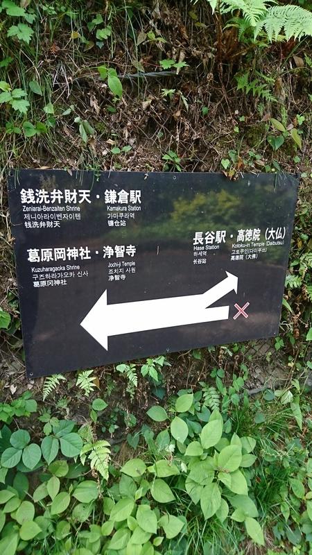 次は鎌倉の大仏へ