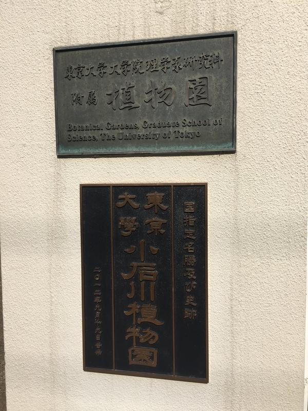 東京大学大学院理学系研修科付属植物園