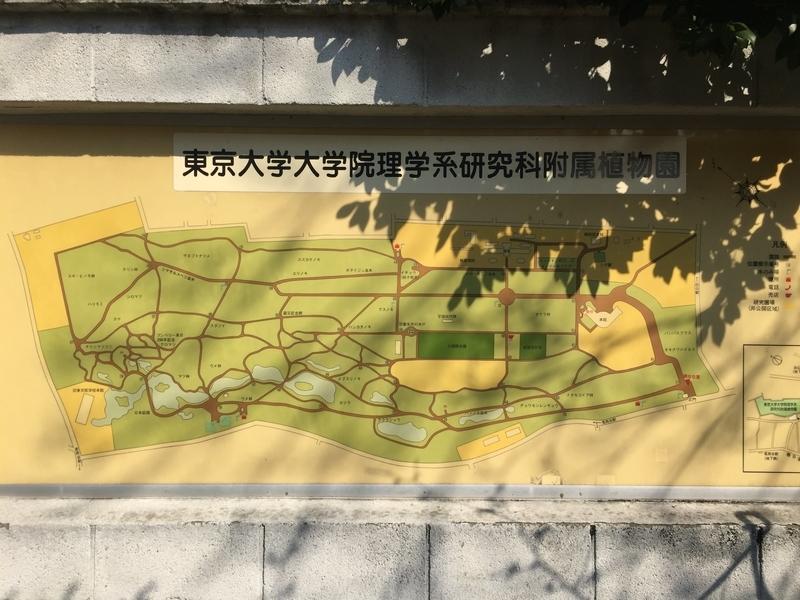 東京大学大学院理学系研修科付属植物園 園内地図