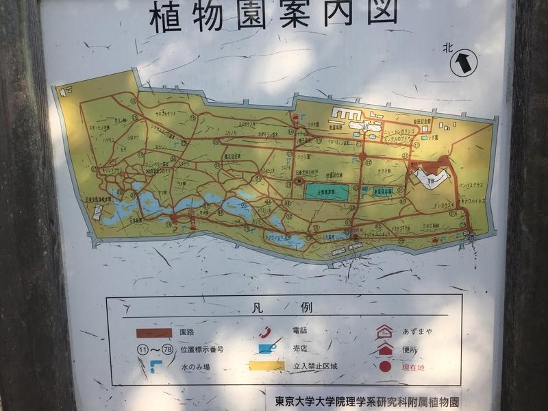 植物園案内図