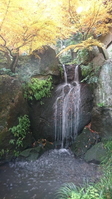 椿山荘の庭