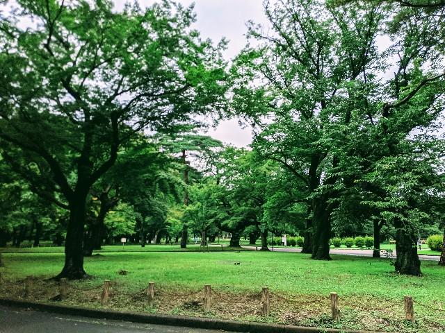 f:id:yomumirutaberu:20210711211143j:image