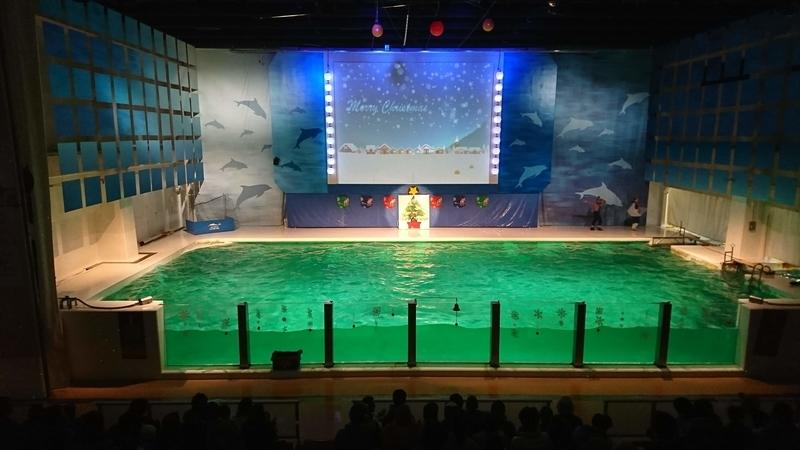 イルカショーの水槽