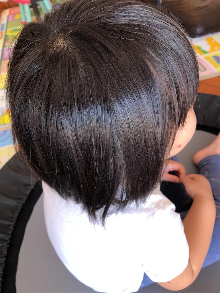 f:id:yonakano-undoukai:20200405102324j:image