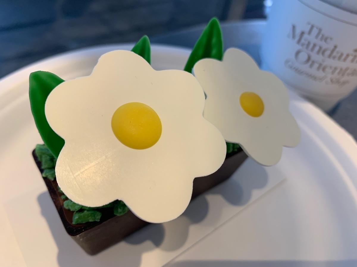 夏季限定、チョコレートケーキ、鉢