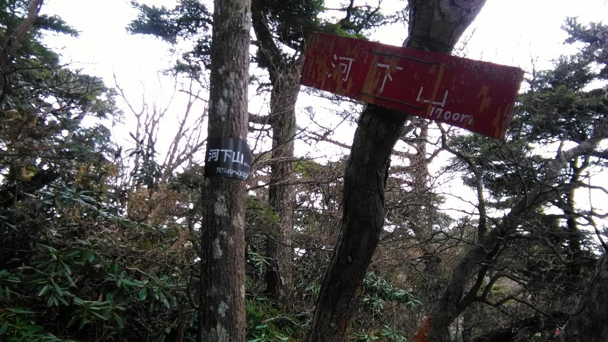 f:id:yonchan324:20190523065211j:plain:h120
