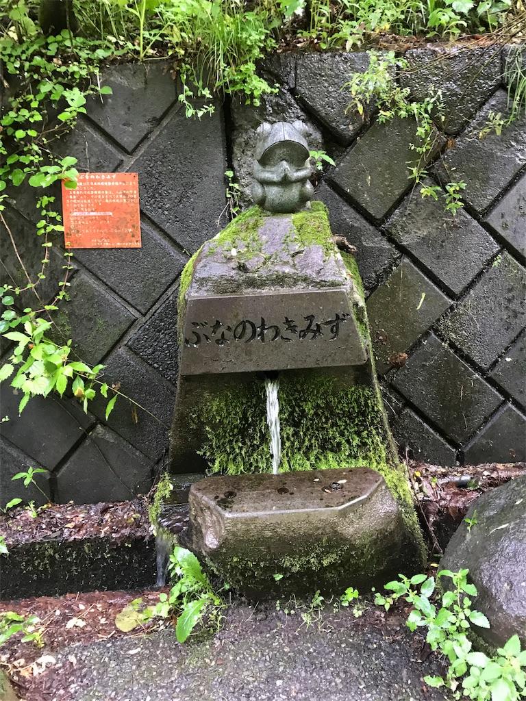 f:id:yoneba_1717:20170805204603j:image
