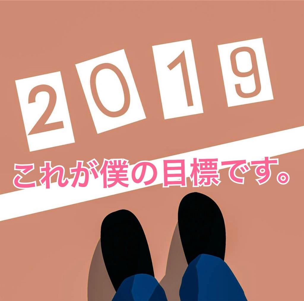 f:id:yonechix:20190101192946j:image
