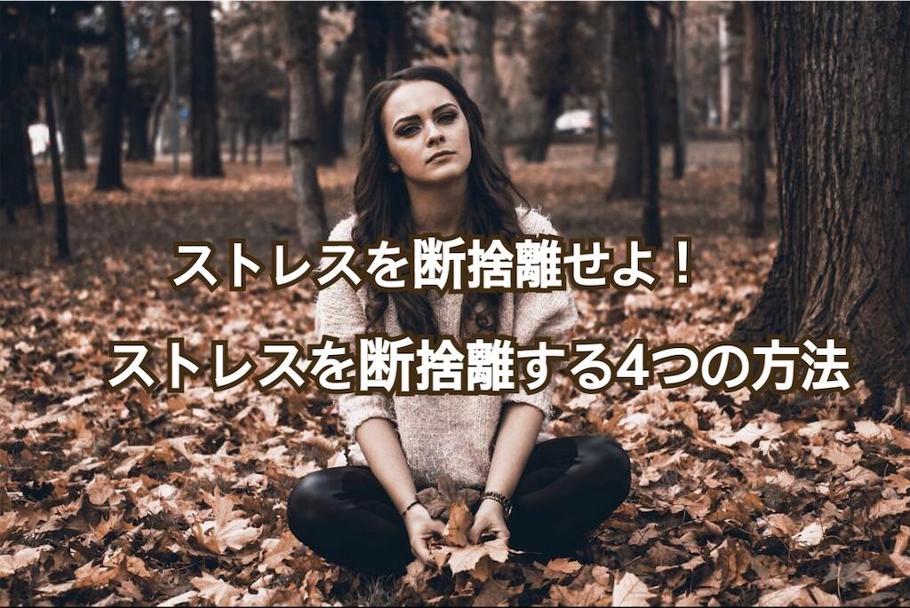 f:id:yonechix:20190217223252j:image