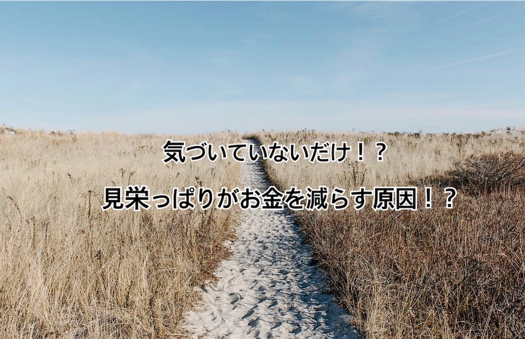 f:id:yonechix:20190307205215j:image